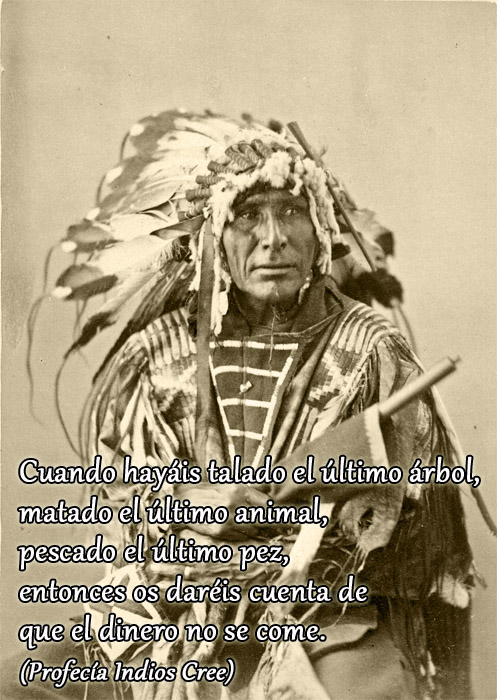 Profec�a Indios Cree - Cree Indian Prophecy